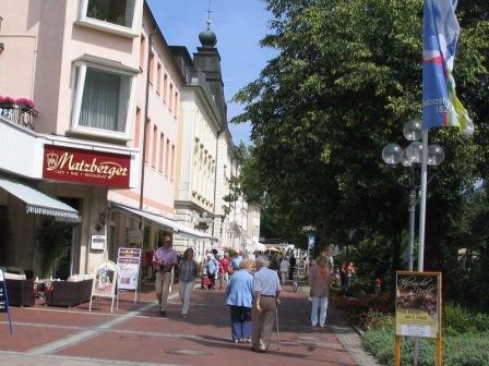 環境と医療で都市をつくる、という話〈上〉</P>夏のドイツ報告