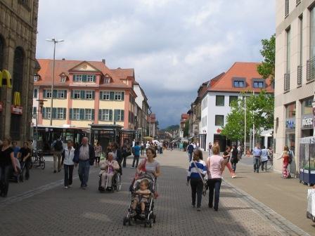 環境と医療で都市をつくる、という話〈下〉</P>夏のドイツ報告
