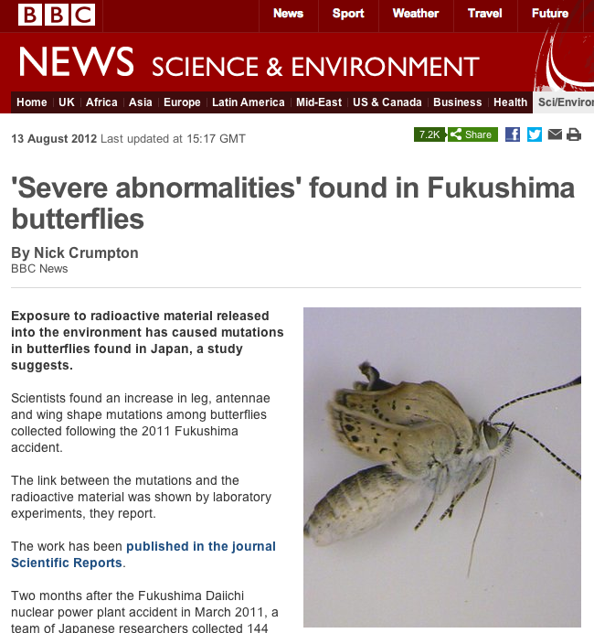 続・福島のデータを見て考えよう~チョウの奇形の原因は