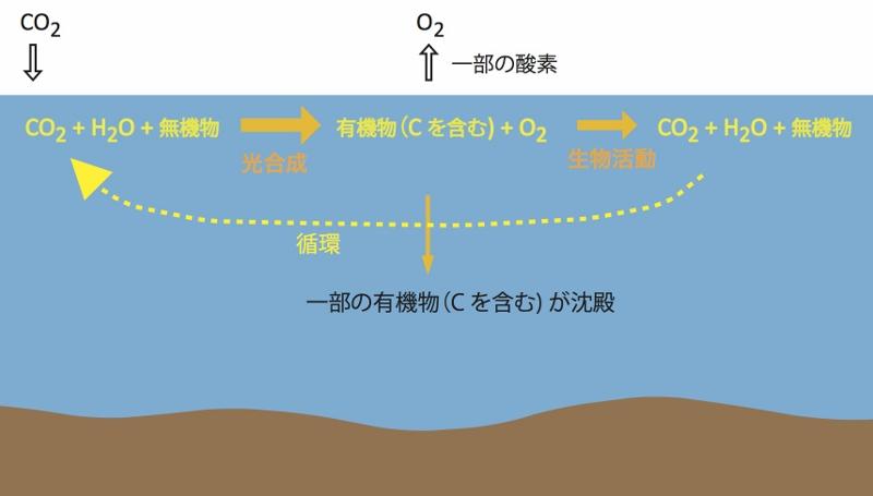 省エネや原発ばかりにとらわれるな:温室効果ガス対策