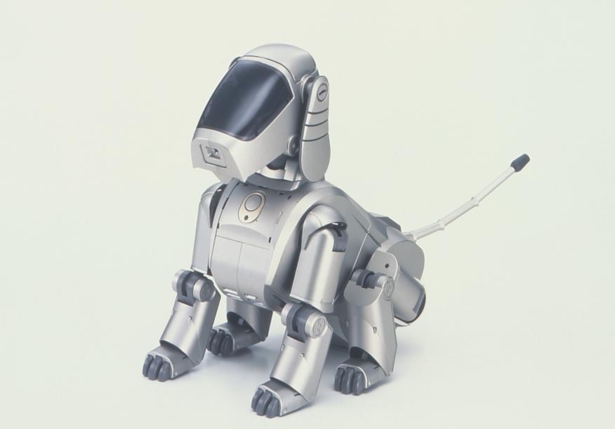 ロボットは意識を持ち得るか?
