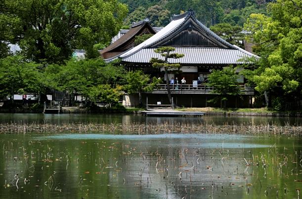 変化を見せる京都の最近の墓事情