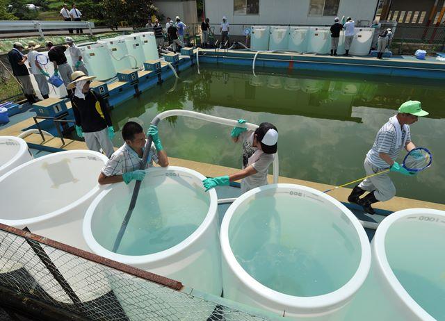 福島支援に入った放射線専門家の反省(1)
