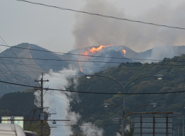 日本人が忘れてしまった山火事の重大さ
