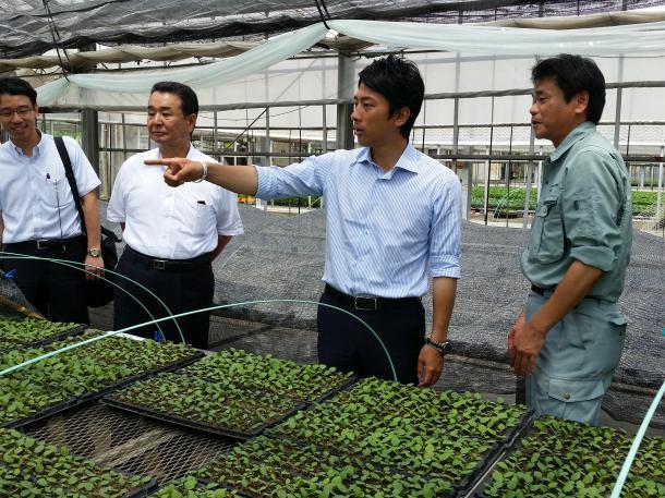 安倍政権の農協改革「秋の陣」が本格化