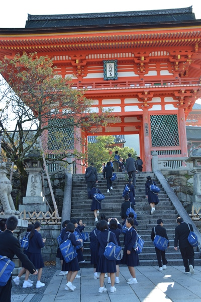 京都の絶景撮影のかげで横行する盗撮