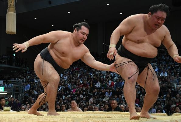 横綱候補がいない大相撲、勢いある若手が不在