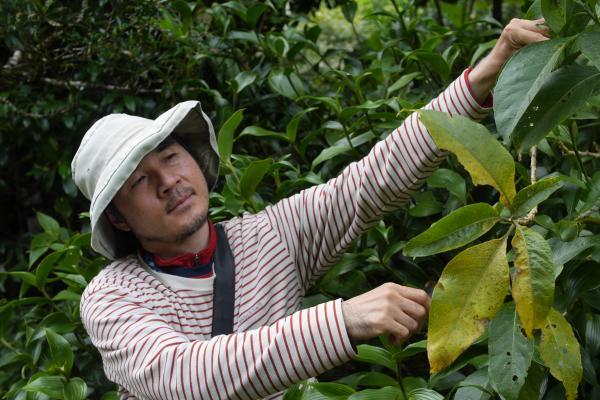 続・コスタリカの森に暮らす「探検昆虫学者」