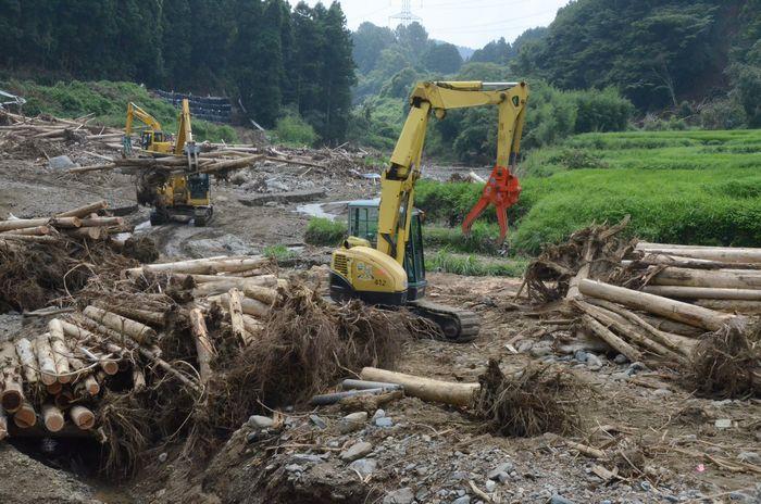 九州北部水害と林業の関係を考える