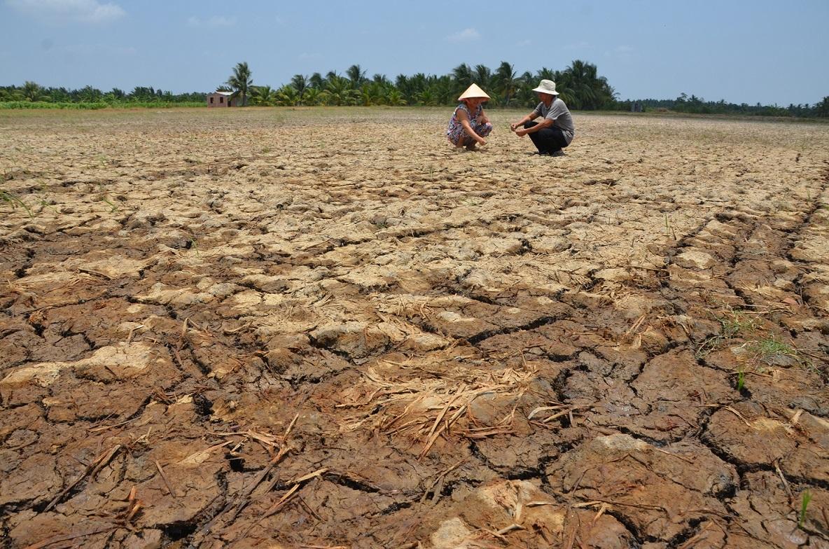 「世界人口が増え、食料危機が起きる」のウソ