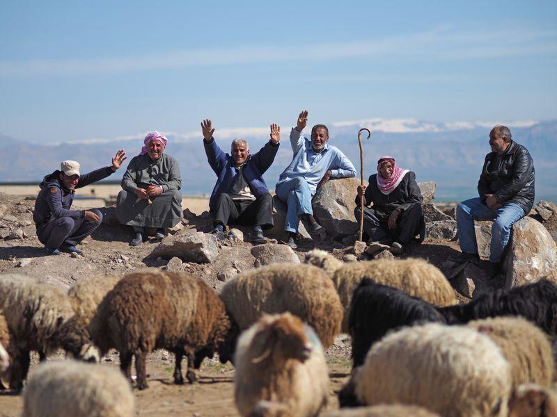 内戦続くシリア――軽食の定番「ファラーフェル」