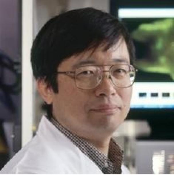 ノーベル賞受賞・本庶佑さんとがん治療法(再掲)