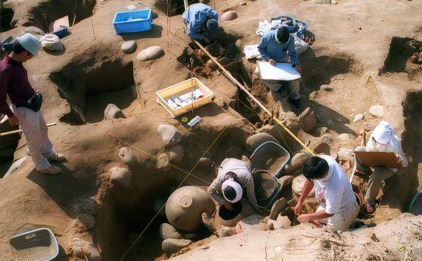 古代人研究も「パーソナルゲノム」の時代に