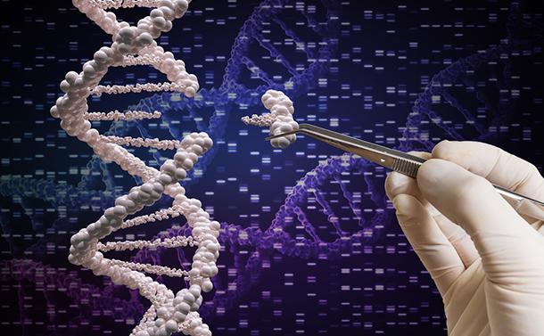 「次世代に遺伝するゲノム編集にモラトリアムを」