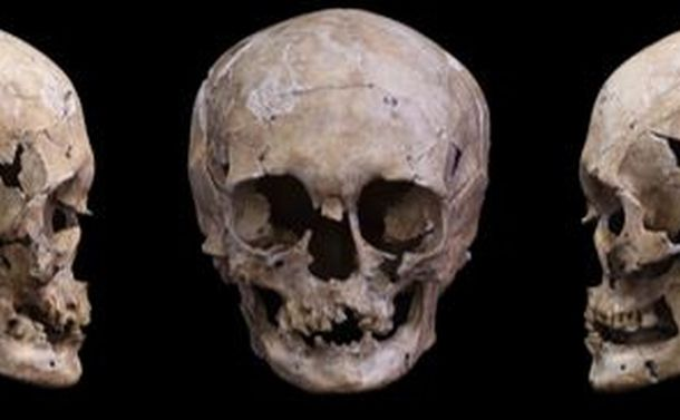 縄文人のゲノムが現代人並みに解読された