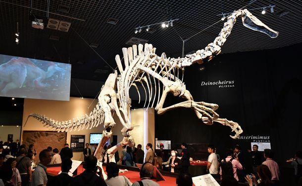 「謎の恐竜」は究極の「へんてこ恐竜」だった!