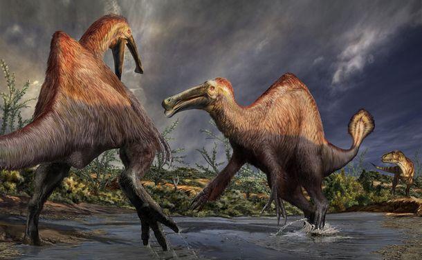 謎の恐竜」は究極の「へんてこ恐竜」だった! - 米山正寛|論座 - 朝日 ...