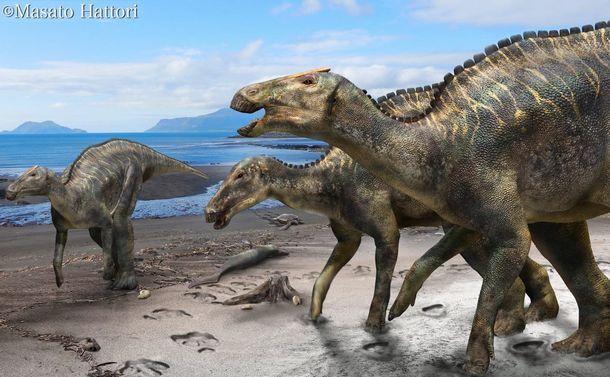 「むかわ竜」から始まる新たな恐竜世界