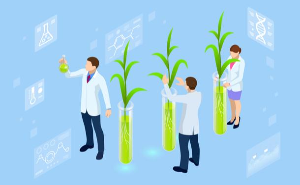 ゲノム編集食品は今年、市場に受け入れられるか