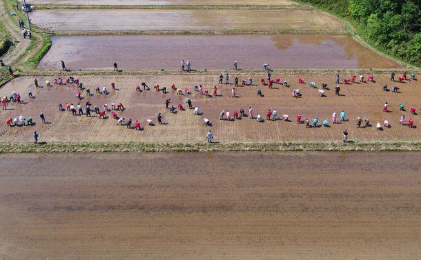 福島県の浜通りに担い手が主役の「農業テストフィールド」を