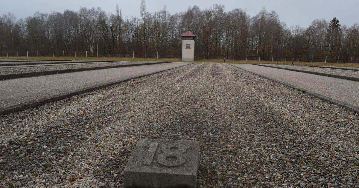 忘却に抗う生存者、ドイツ内外から 強制収容所からの解放、裁き、継承