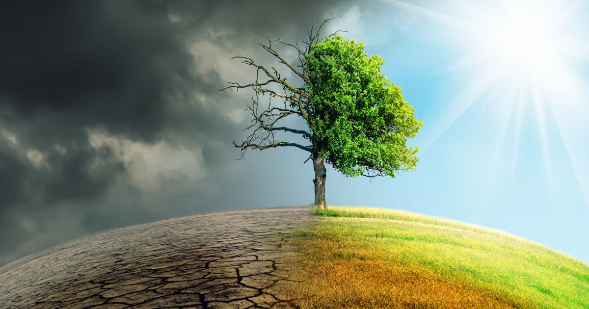 国際社会で注目が高まる気候安全保障。そのリスクの把握と対応を日本は急げ