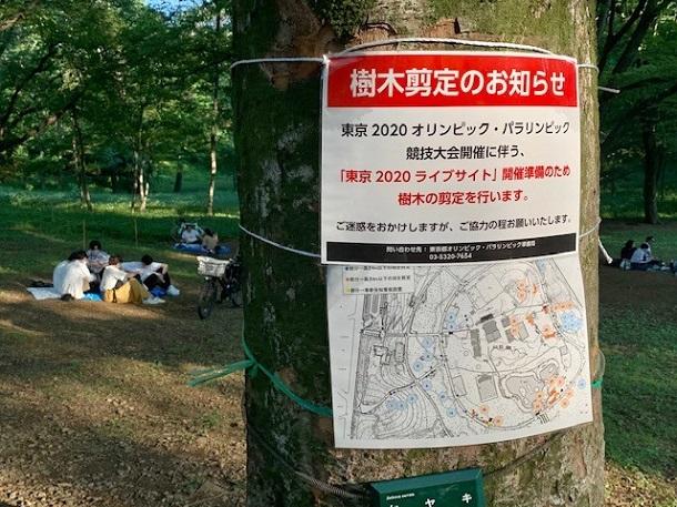 東京五輪・令和3年夏の敗戦