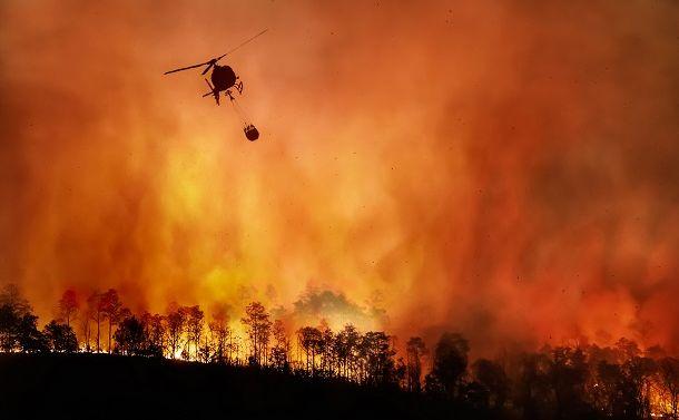 IPCCが「地球が火事になっている」と警告したワケ